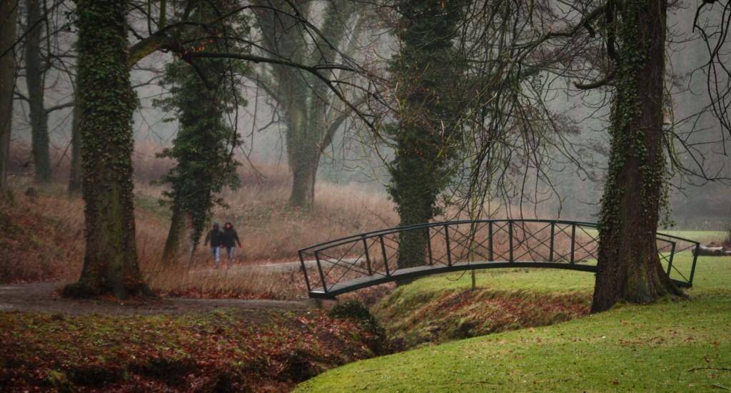Beratung-Goettingen-Park-wege